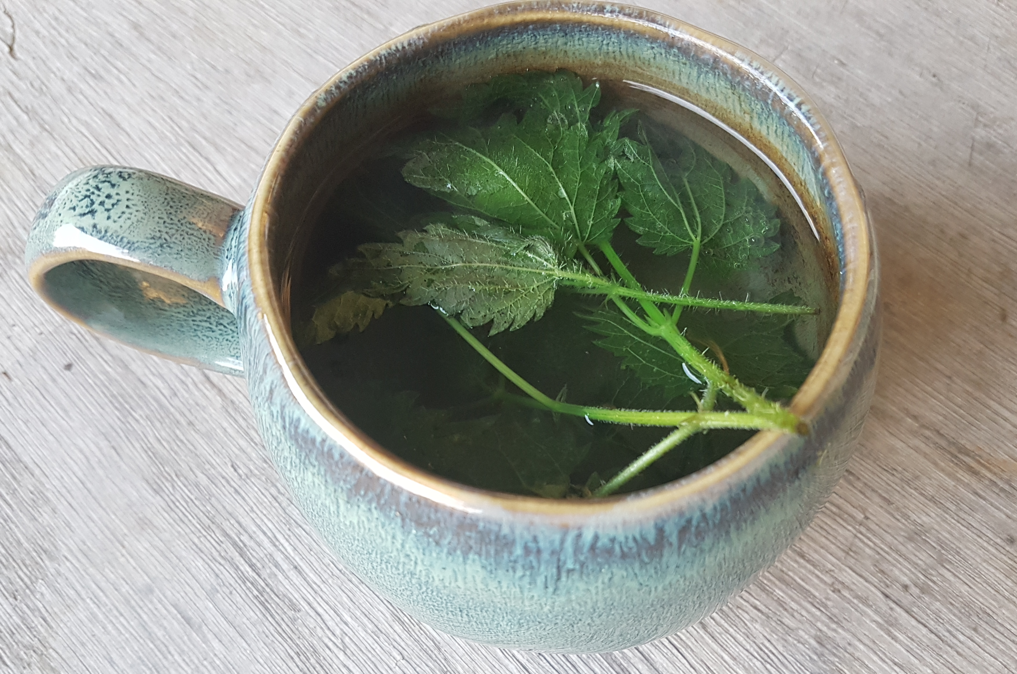 Nettle tea in a mug
